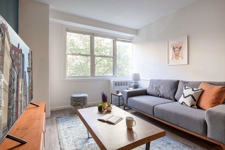 1 bedroom furnished apartment in 420 E 80th St 198, Upper East Side, New York, photo 1