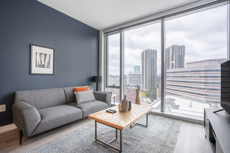1 bedroom furnished apartment in Hub50House, 50 Causeway St 123, North Station, Boston, photo 1