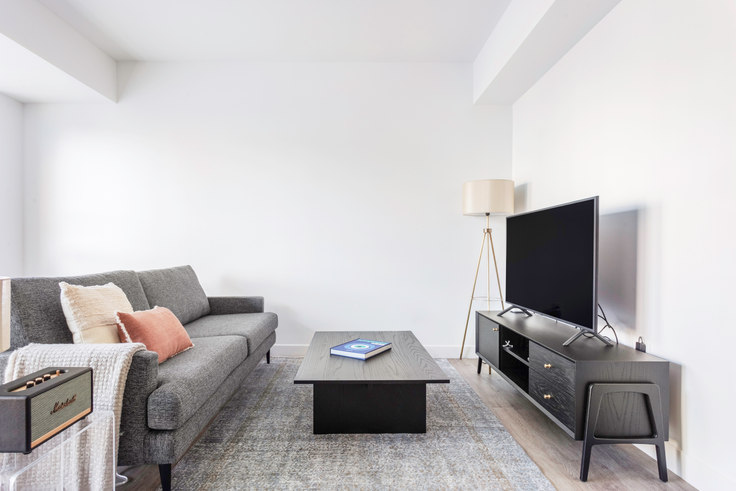 1 bedroom furnished apartment in Watermark Central, 425 Massachusetts Ave 314, Central Square, Boston, photo 1