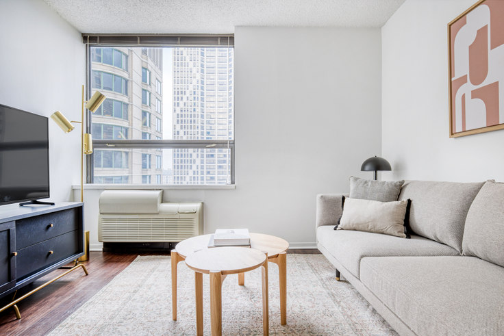 1 bedroom furnished apartment in 445 E Ohio St 412, Streeterville, Chicago, photo 1