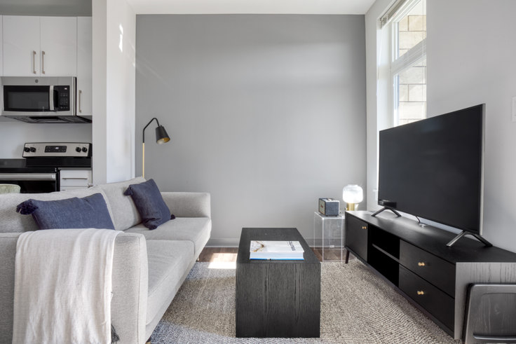 1 bedroom furnished apartment in The Overlook at St. Gabriel's, 175 Washington St 433, Brighton, Boston, photo 1