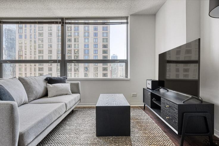 Studio furnished apartment in Lake Shore Plaza, 445 E Ohio St 446, Streeterville, Chicago, photo 1